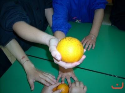 Spuntini Sani Per La Scuola : A scuola arriva il progetto merenda uno spuntino sano a